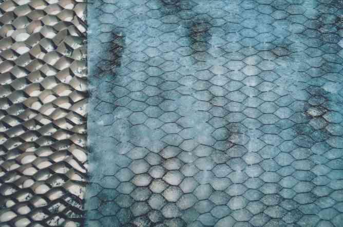 Honeycomb-tissue.jpg