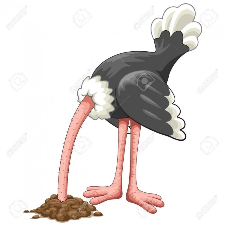 88670235-ostrich-head-in-sand-proverb-cartoon-character.jpg